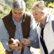 Stock Photo: Senior couple in forest holding ceps mushrooms