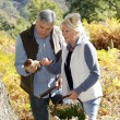 Senior couple in forest holding ceps mushrooms — Stock Photo