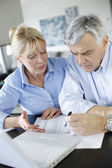 Senior couple inquiring bank website for help — Stock fotografie