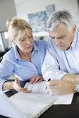 年配のカップルの助けのための銀行のウェブサイトお問い合わせ — ストック写真