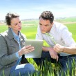 Stock Photo: Agronomist looking at wheat quality with farmer