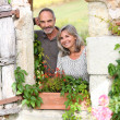 Senior couple enjoying country home — Stock Photo #35319301