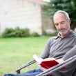Stock Photo: Senior mreading novel