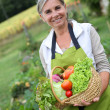 Senior woman holding fresh vegetables — Stock Photo