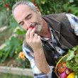 Mature man in garden — Stockfoto