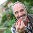 Senior man showing tomatoes — Stock Photo
