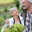 Husband and wife in kitchen garden — Stock Photo
