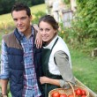 Couple standing in kitchen garden — Stock Photo #35326269