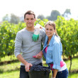 Winegrowers standing in vine rows — Stock Photo