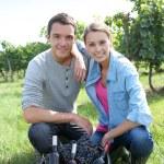 Couple in vineyard — Stock Photo