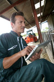 Farmer using tablet in barn — Stock Photo
