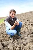 Woman in farming land — Stock Photo