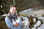 Farmer with milk in barn — Stock Photo