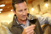 Winegrower in wine-cellar — Stock Photo