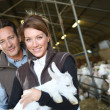 Breeders carrying baby goat — Stock Photo