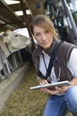 Woman veterinarian in barn — Stock Photo
