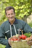Farmer holding basket of vegetables — Stock Photo
