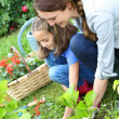 Girl helping mother gardening — Stock Photo #47820969