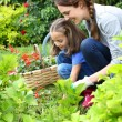 Girl helping mother gardening — Stock Photo #47820975