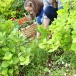 Girl helping mother gardening — Stock Photo #47820985