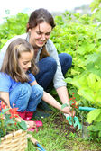 Girl with mother gardening — Stock Photo