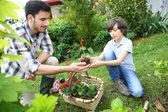 Daddy with son gardening — Stock Photo