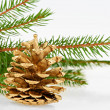Golden pine cone with conifer — Stock Photo #13738752