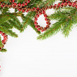 Stock Photo: Christmas frame with conifer and red garland