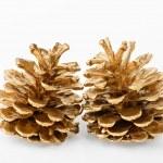 Two golden pine cones — Stock Photo