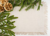 Christmas frame with conifer, linen fabric and pine cones — Stock Photo