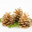 Three Golden pine cone with conifer — Stock Photo