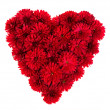 Heart from red flowers — Stock Photo
