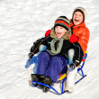 Stock Photo: Little boy and girl on sleigh winter