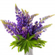 Beautiful lupin bouquet in vase — Stock Photo