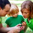 Portrait of Happy Family In Park — Stock Photo #13119583