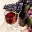 Bottle and glass of red wine — Stock Photo #14034192