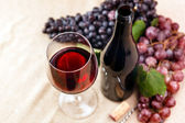 Bottle and glass of red wine — Stockfoto