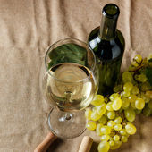 Bouteille et verre de vin blanc — Photo