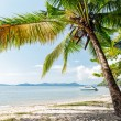Perfect thai beach with white sand — Stock Photo #26853183