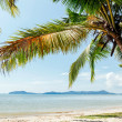 Perfect thai beach with white sand — Zdjęcie stockowe #26853223