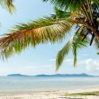 Стоковое фото: Perfect thai beach with white sand