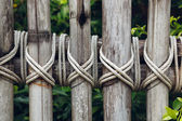 Closeup of a wooden fence — Stock Photo