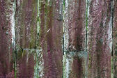 Closeup of old weathered fence. — Stock Photo