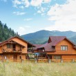 Hotel in Carpatian Mountains. Ukraine. — Stockfoto #50712675