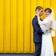 Bride and groom hugging against wall — Stock Photo #8146774