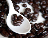 Coffee beans in a spoon . — Foto Stock