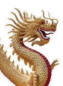 Golden Dragon Sculpture — Stok fotoğraf