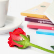 Red rose on the  book. — Stock Photo