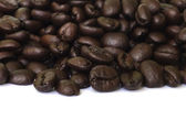 Coffee bean seed . — Stock Photo