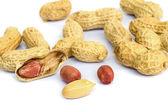 Peanut . — Stok fotoğraf